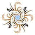 Bone spiral Royalty Free Stock Photo