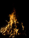 Bonfire Royalty Free Stock Photo