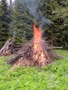 Bonfire on the forest edge spring Stock Image