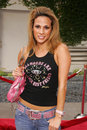 Bonnie jill laflin los angeles premiere hustle flow cinerama dome hollywood ca Stock Image