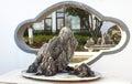 Bonsai exhibition Royalty Free Stock Photo