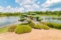 Bonsai tree in the Japanese Island at Chicago Botanic Garden Royalty Free Stock Photo