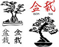 Bonsai Trees & Kanji Characters 2 [Vector] Royalty Free Stock Photo