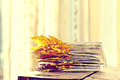Book pages with  dry autumn leaves Royalty Free Stock Photo