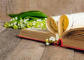 Book pages folded into a heart and a flower lily of the valley soft focus deliberate slight blurring Royalty Free Stock Photo