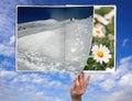 Book Of Seasons