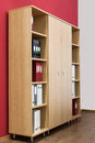 Bookcase with folders Royalty Free Stock Photo