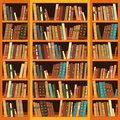Bookcase full of books large with different Royalty Free Stock Image