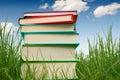 Libros en hierba