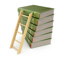 Books and ladder on white background d render Royalty Free Stock Photos