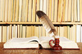 Books quill in inkstand on a background of Royalty Free Stock Images