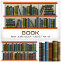 Books on shelves text new white vector illustration Stock Photography