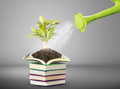 Books and watering pot ecology concept Stock Photo