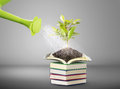 Books and watering pot ecology concept Stock Image