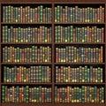 Bookshelf full of books background. Royalty Free Stock Photo