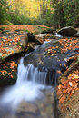 Boone fork creek western north carolina vertical landscape of with fallen autumn leaves covering the rocky streambed off the blue Stock Photo