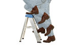 Boots Climb a Ladder Stock Images