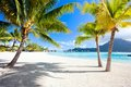 Bora Bora beach Stock Images