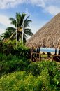 Bora bora french polynesia palm tree and hut at beautiful lagoon of Royalty Free Stock Images