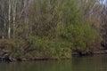 Borcea shores early spring 3