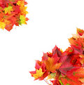 Border from autumn maple foliage Royalty Free Stock Photo