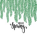 Border frame branch leaves. Hello spring. Hand drawn calligraphy and brush pen lettering. design for holiday greeting card and inv