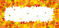 Border frame of colorful autumn leaves isolated on white horizontal background