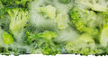 Border of fresh frozen green broccoli in ice closeup on white background.