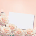 Border from fresh roses pastel on pink background flowers frame place for your text Stock Photo