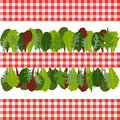 Border of salad leaves mixed on white background Royalty Free Stock Photography