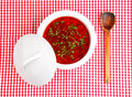 Borsch on a checked cloth Royalty Free Stock Image