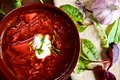 Borsch ukrainian national red soup and greens Royalty Free Stock Photography