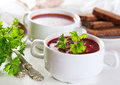 Borscht soup Royalty Free Stock Photo