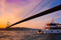 Bosphorus Bridge in Istanbul Royalty Free Stock Photo