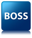 Boss blue square button