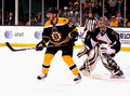 Boston Bruins Center David Krejci Royalty Free Stock Photos