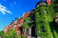 Boston historic housing with ivy covered walls at back bay Royalty Free Stock Photo