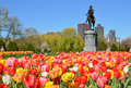 Boston public garden george washington statue surrounded by tulips tourists and beautiful spring colors Stock Photos