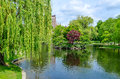 Boston public garden on a sunny day Royalty Free Stock Photography