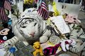 Boston strong stuffed tiger in memorial massachusetts usa april white surrounded by mementoes to the victims of the marathon Stock Photos