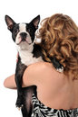 Boston Terrier Over Woman's Shoulder Royalty Free Stock Photography