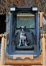 Boston terrier on the skid steer wants to drive at farm Stock Image