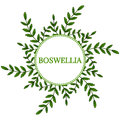 Boswellia in color, round frame 1