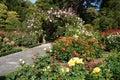 Botanic garden Stock Photos