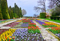 Botanic garden with colorful flowers