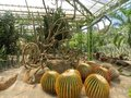 Botanic garden in the thailand Stock Image