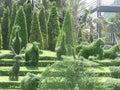 Botanic garden thailand Royalty Free Stock Photography