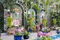 Botanic Garden. Washington D.C. USA