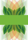Botanical background of stylised leaves Royalty Free Stock Photos