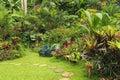 Botanical garden in Barbados, Caribbean Royalty Free Stock Photo
